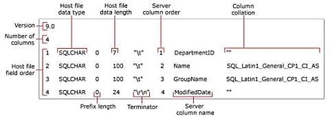 Beskrivning av format file